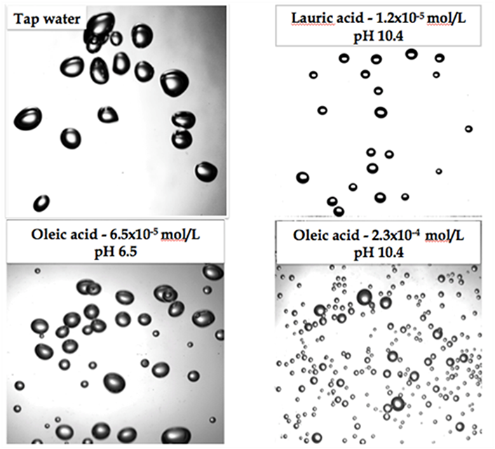 effect of fatty acids on air bubble sizes (2)